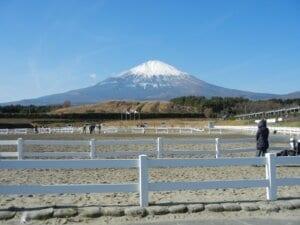 文化遺産富士山2048