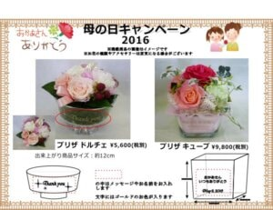 2016.5.8母の日キャンペーン プリザ
