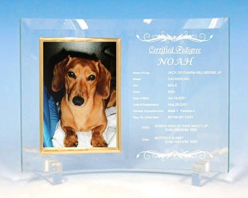☆お祝い・記念品に ペットちゃん「血統書」を曲ガラスフォトスタンドに刻印いたします☆